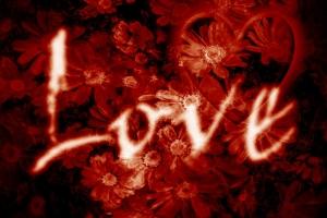 shutterstock_34049236-love